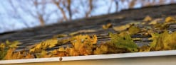 Fall Maintenance Tips for Your House