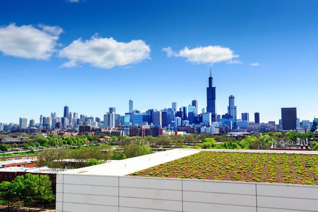 Green Roofs- Roof Garden | Piedmont Roofing