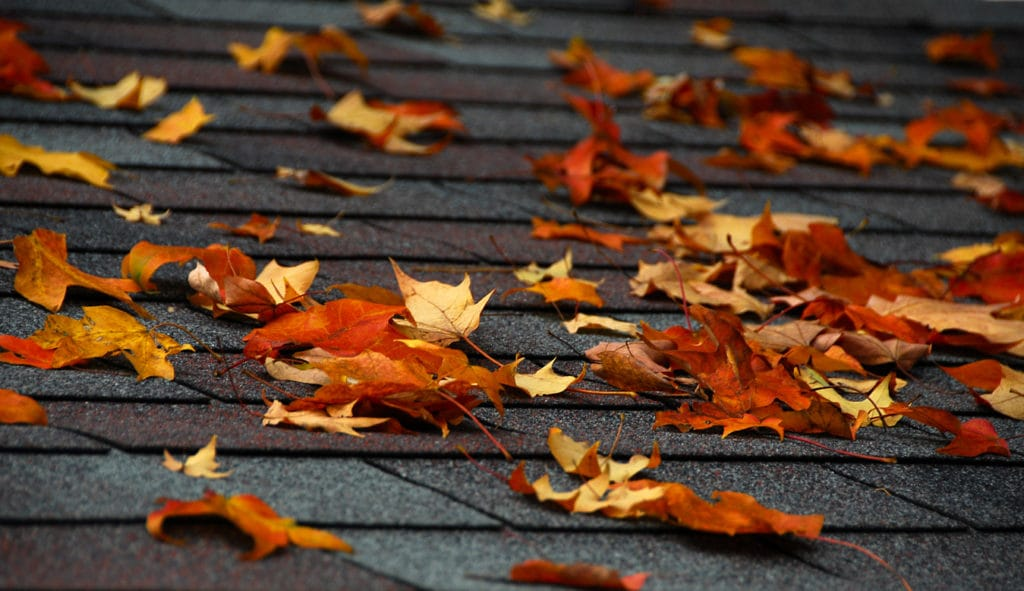Preparing Roof for Fall | Piedmont Roofing